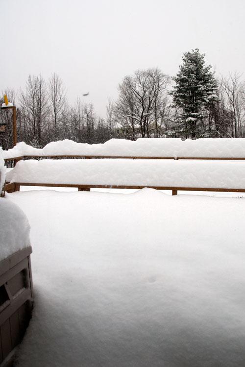 December 20th Snow Storm